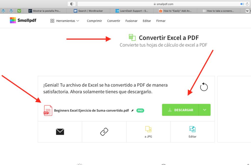 cuando eligas el archivo de excel lo convertirá a PDF